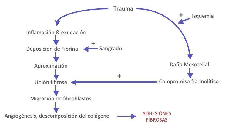 protescal-mecanismodeformacion